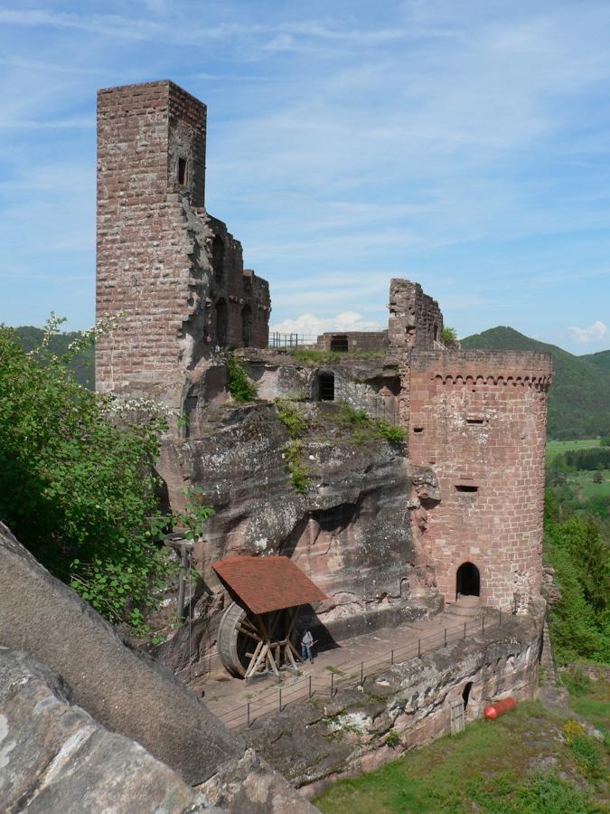 2012.05.11-AGS Wanderung Dahner-Felsenland-[P1160114]-Nr.036