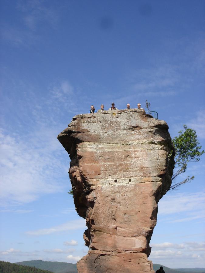 2012.05.12-AGS Wanderung Dahner Felsenland-[DSC00103]-Nr.054