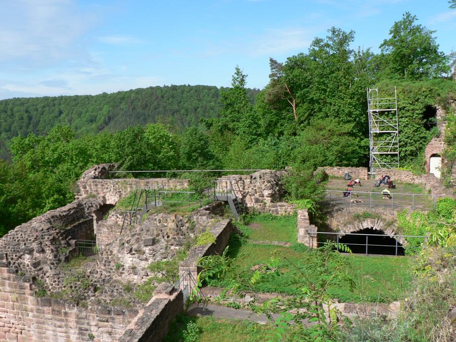 2012.05.12-AGS Wanderung Dahner-Felsenland-[P1160130]-Nr.045