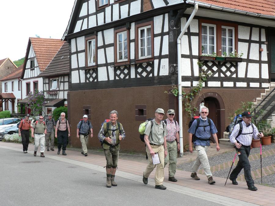 2012.05.12-AGS Wanderung Dahner-Felsenland-[P1160144]-Nr.059