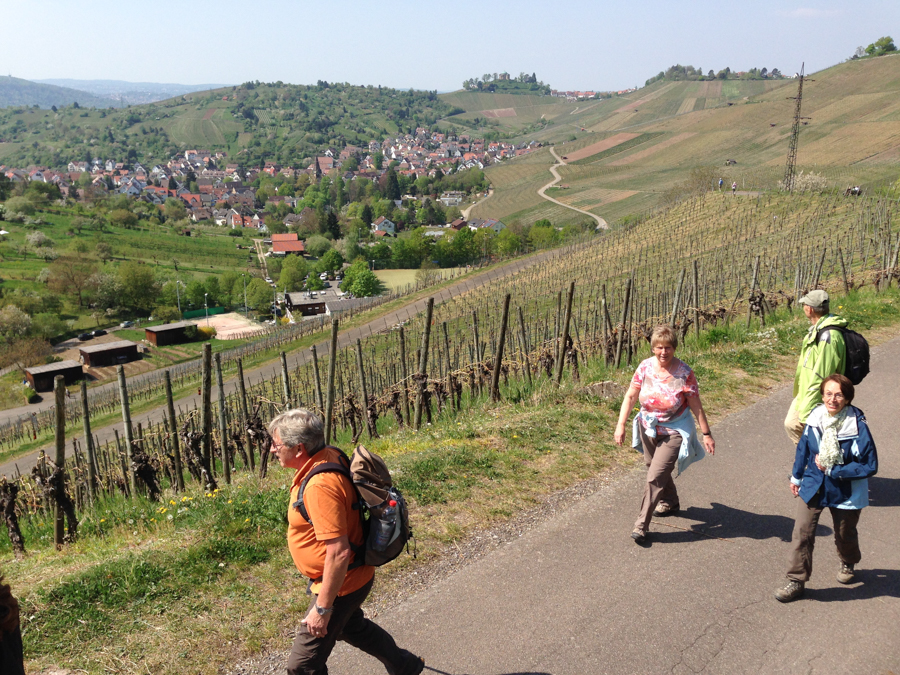 2014.04.13-AGS-Bluetenwanderung_um_ES-[IMG_3773]-Nr.031