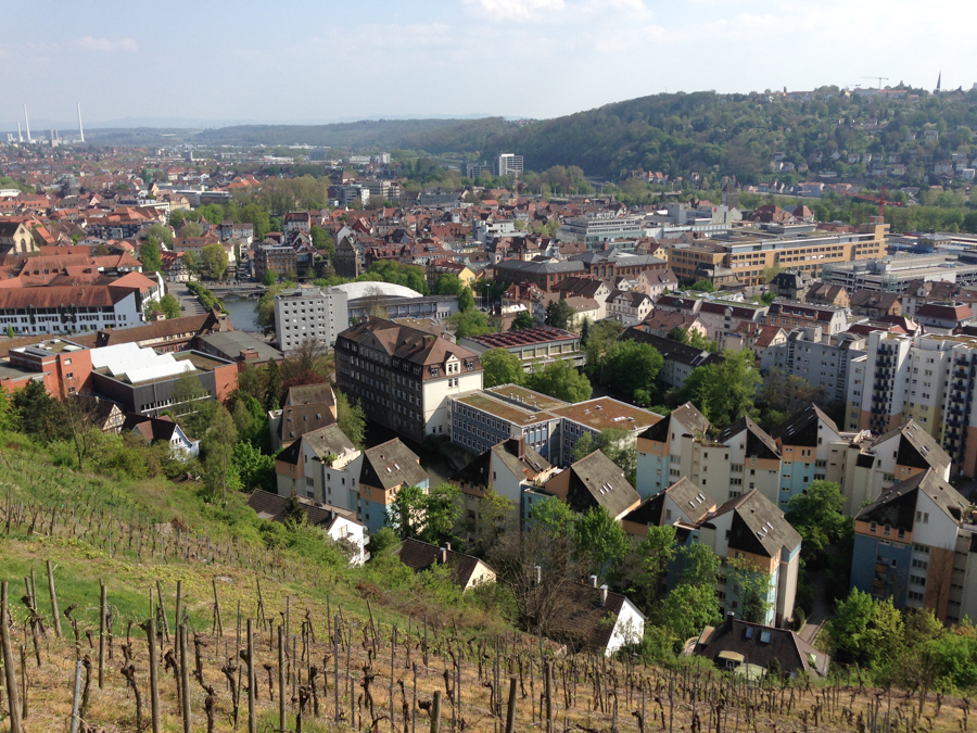 2014.04.13-AGS-Bluetenwanderung_um_ES-[IMG_3788]-Nr.042
