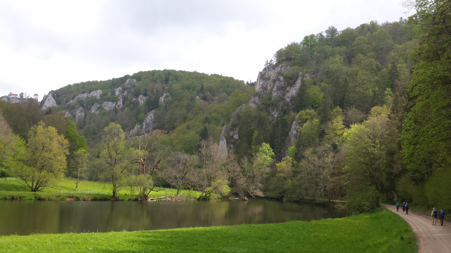 20190512-AGS-wanderung-Donau-[2019-05-12 10.55.04]-104