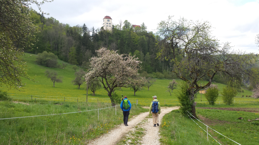 20190512-AGS-wanderung-Donau-[2019-05-12 12.40.18]-105
