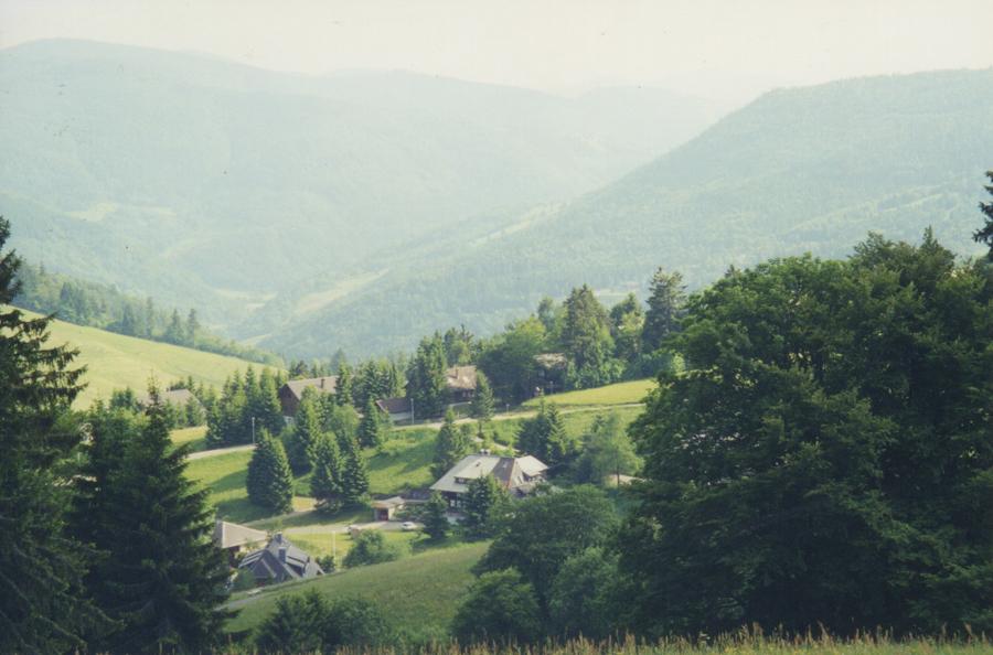 Schwarzwald 2000 0