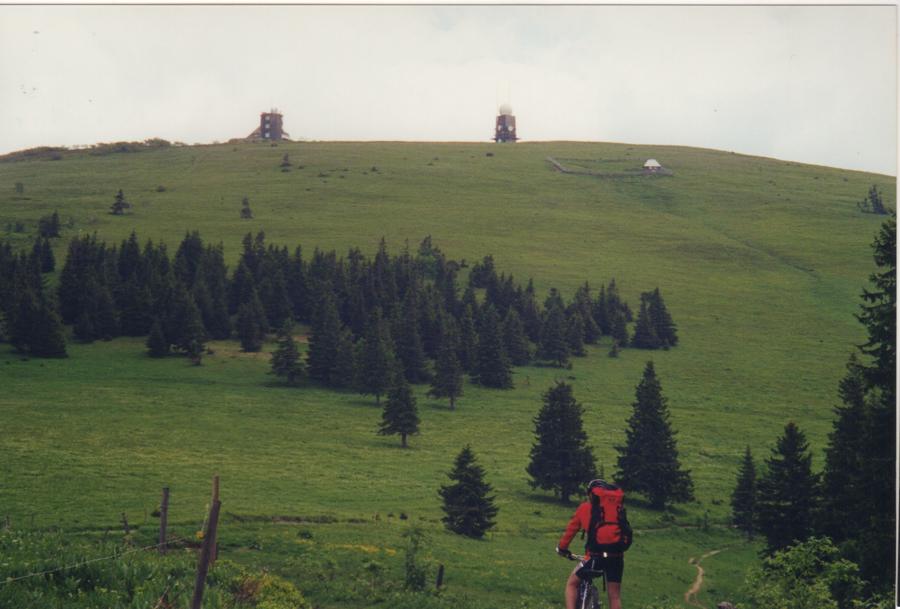 Schwarzwald 2000 2