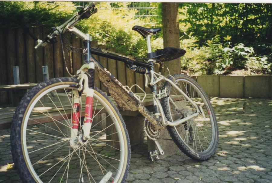 Schwarzwald 2000 5