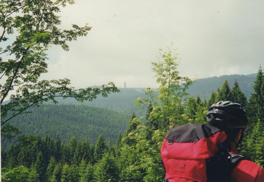 Schwarzwald 2000 7