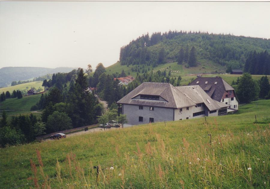 Schwarzwald 2000 8